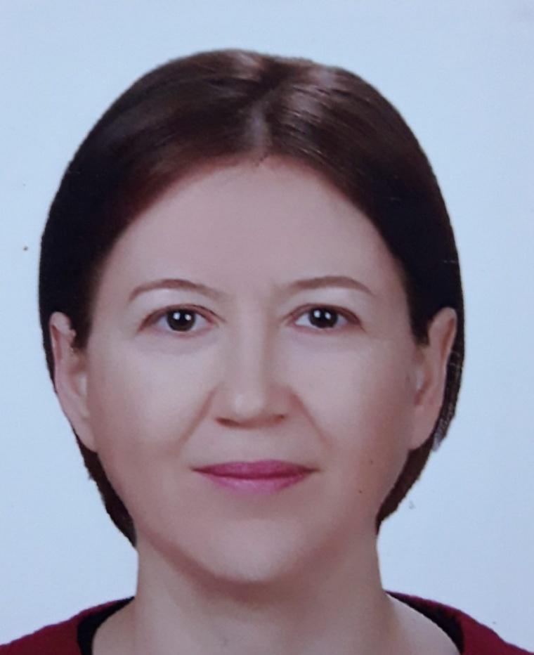 Prof. Dr. Elif  İpek SATAR